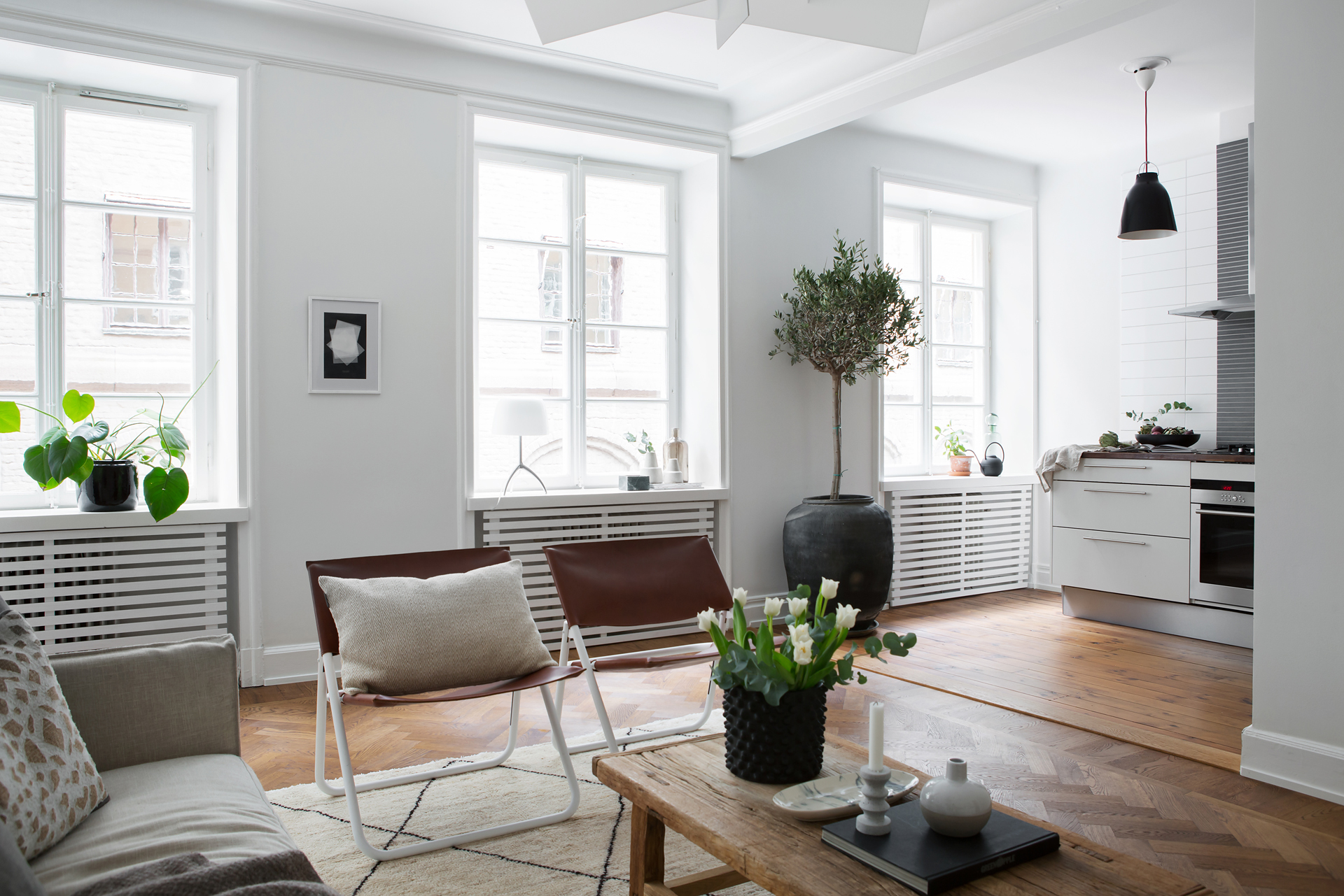A Swedish living room, Scandinavian home design